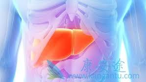 乙肝表面抗体阳性